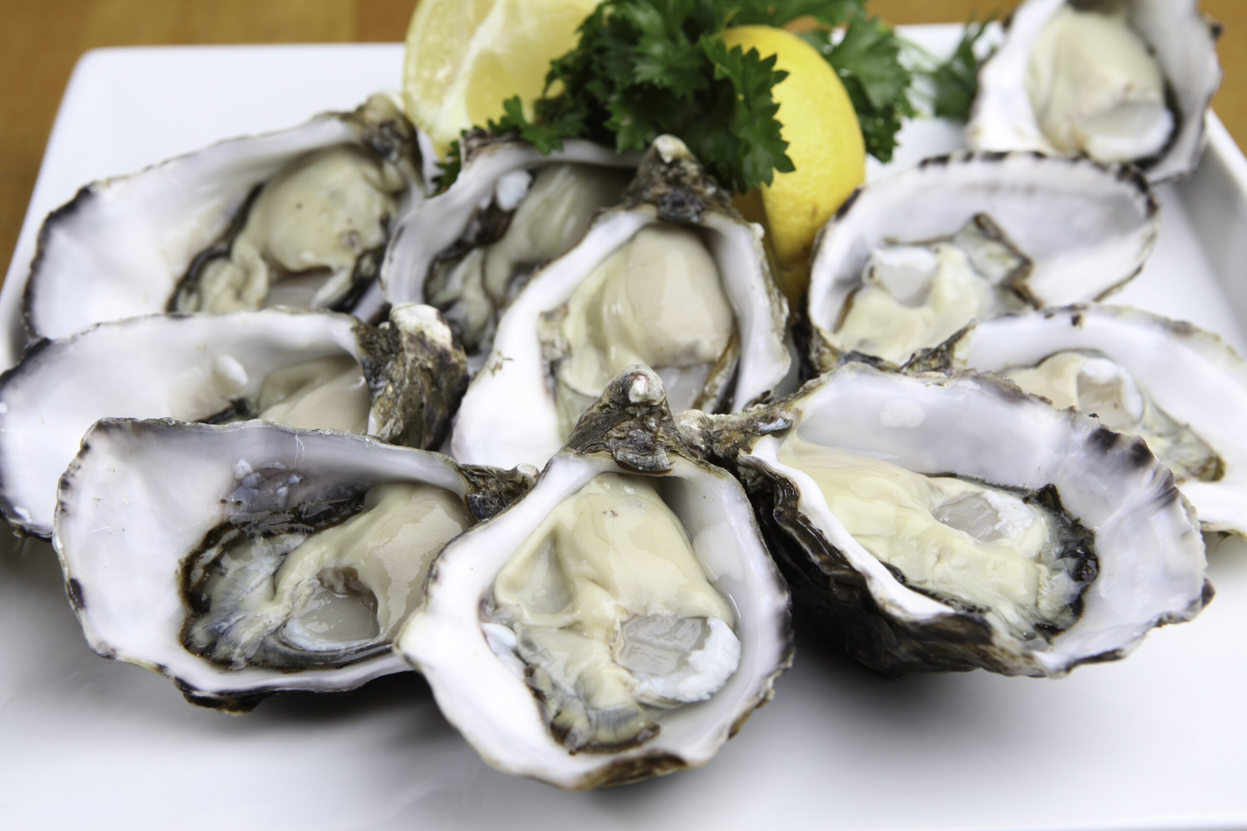 Oysters On White Plate
